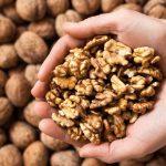 Types Of Walnuts